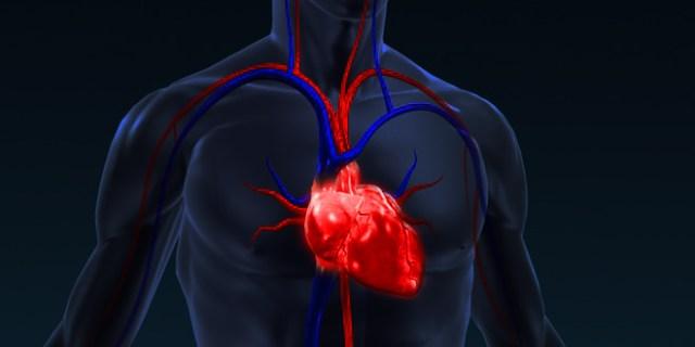 inima sanatoasa