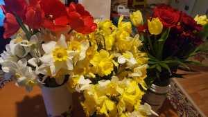 Flori în dar de ziua mea
