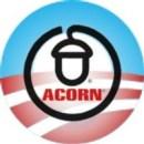 acorn_obama - Copy