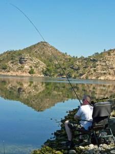 Sane Calton playing a large River Ebro roach