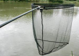 Fox Warrior+ Plus Landing Net & handle review - 42 inch - carp net
