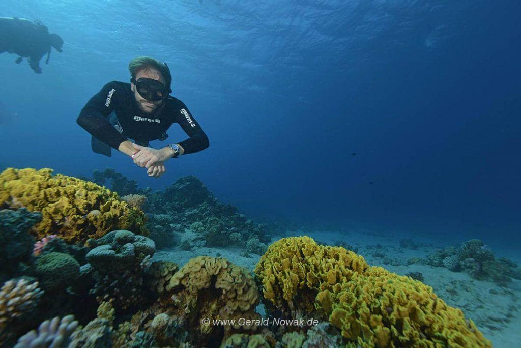 Nik Linder beim Apnoe Auch für Apnoe-Taucher hatte die Tala Bay Dive Challenge einiges zu bieten. Foto: Gerald Nowak