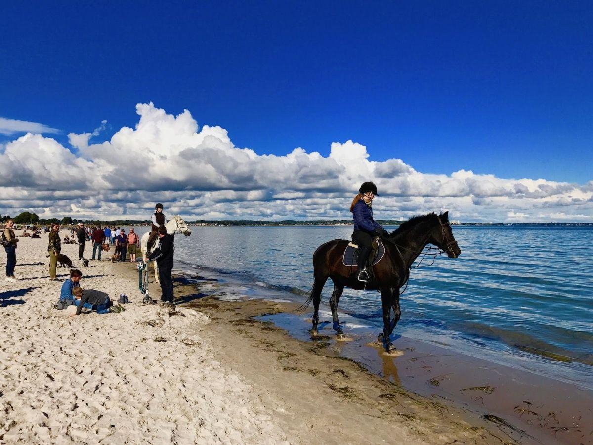 Reiten am Strand: Scharbeutz ist das Mekka der Pferde-Fans