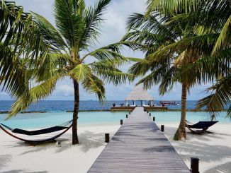 Paradise has a name: Coco Bodu Hithi - all information about the island in our travelogue! Photo: Sascha Tegtmeyer