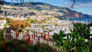 Wir stellen Euch viele wertvolle Madeira-Tipps für eine unvergessliche Reise auf Insel vor.