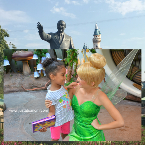 tinkerbell, pixie hollow