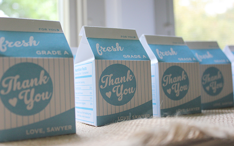 Milk and Cookies Birthday Party Milk Carton Favors