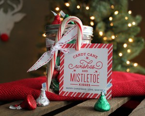 Candy Cane Wishes and Mistletoe Kisses Christmas Gift Idea