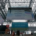 Swoon-Worthy Sundays: Book Expo America 2013