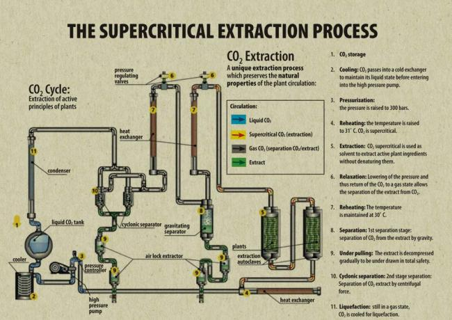 The Supercritical Extraction Process | Essential Oils | justbecauseicare