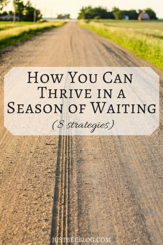 how-you-can-thrive-in-a-season-of-waiting-just-bee