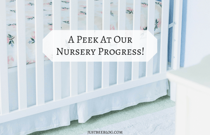 A Peek At Our Nursery Progress!