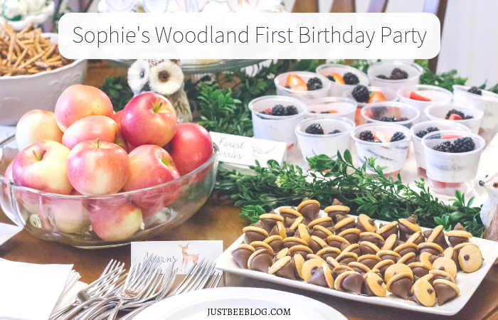 Sophie's Woodland First Birthday Party