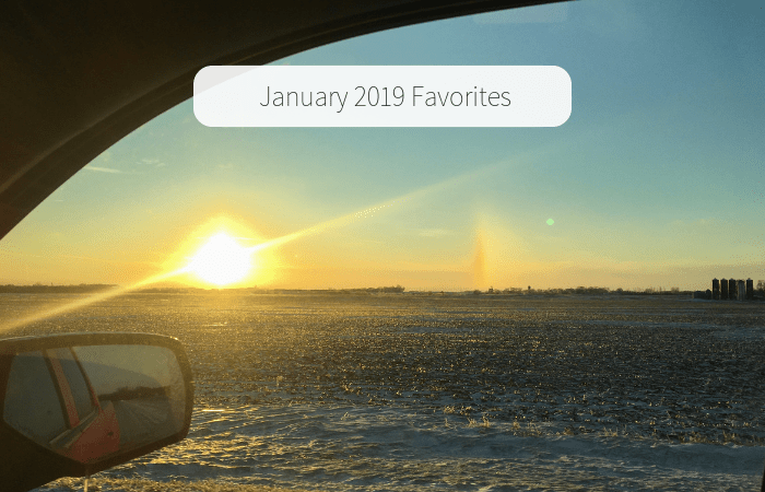 January 2019 Favorites