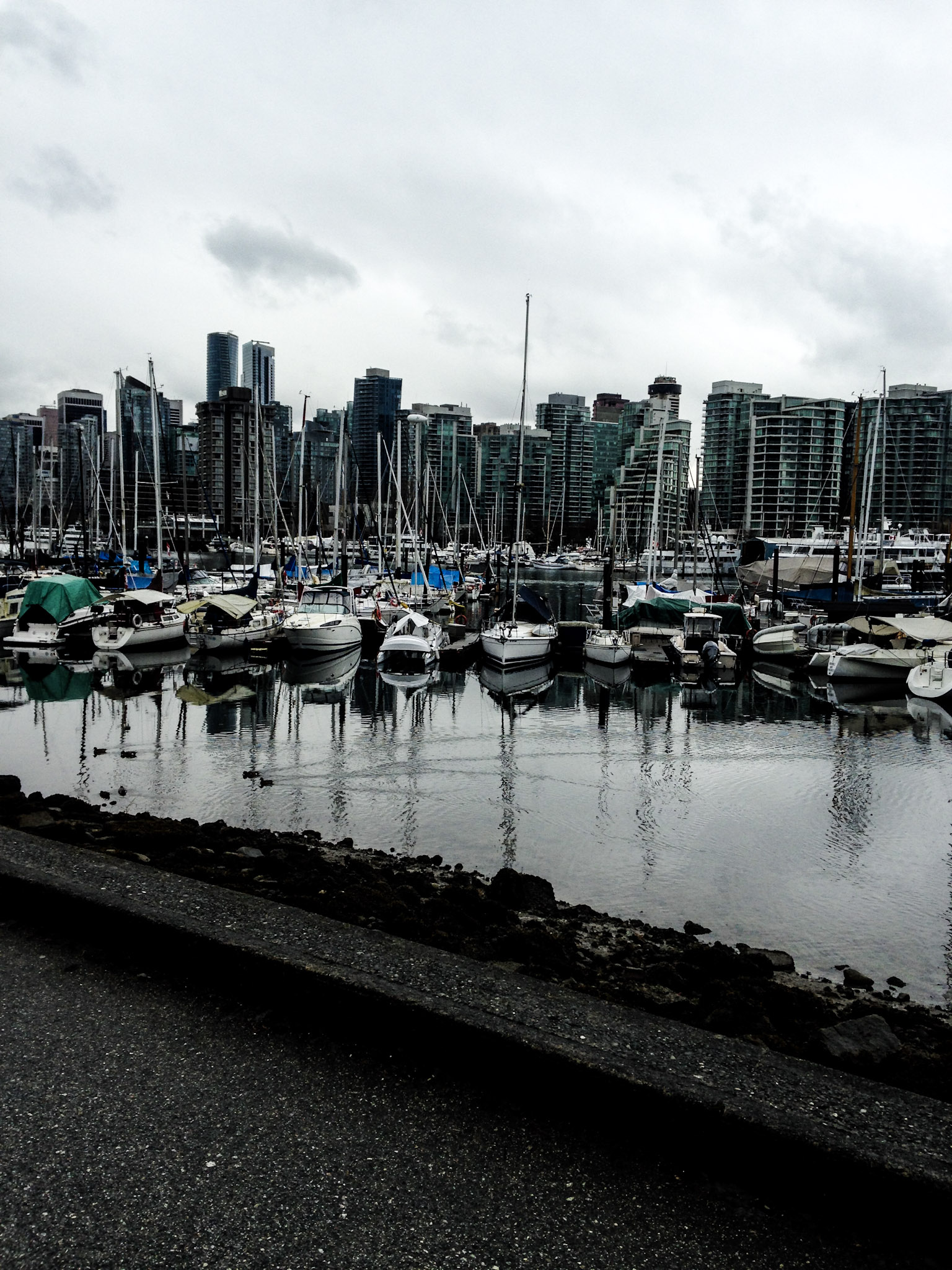 Exploring Stanley Park - A Vancouver Must Do