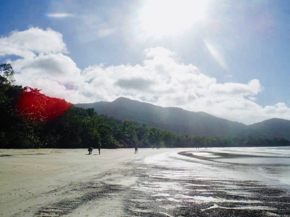 Daintree Rainforest Billy Tea Safaris