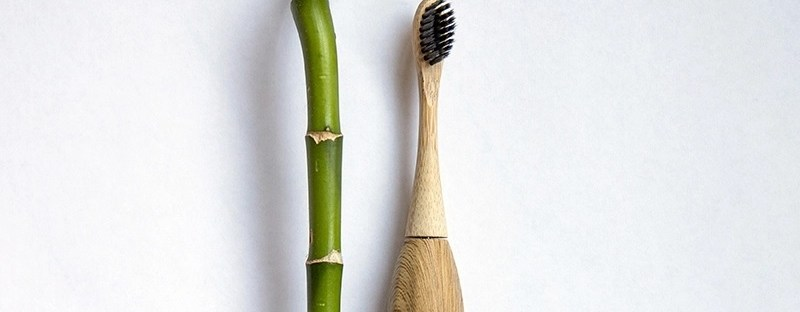 electric bamboo toothbrush header image