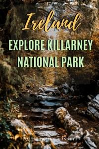 Explore Killarney National Park