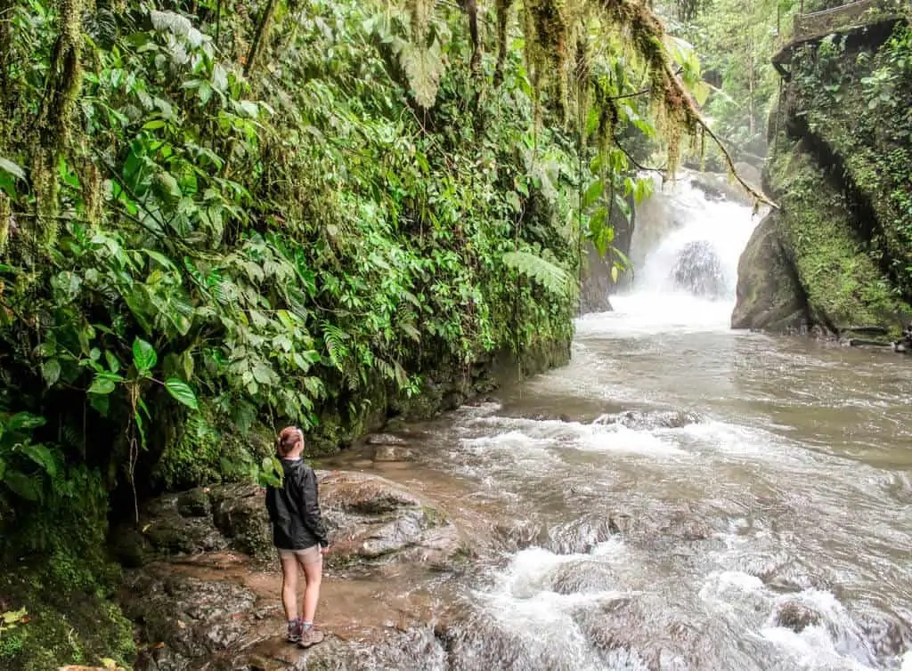 A waterfall in Mindo Cloud Forest