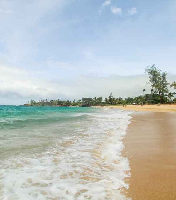 The Four Beaches in Paia Maui You Must Visit Now