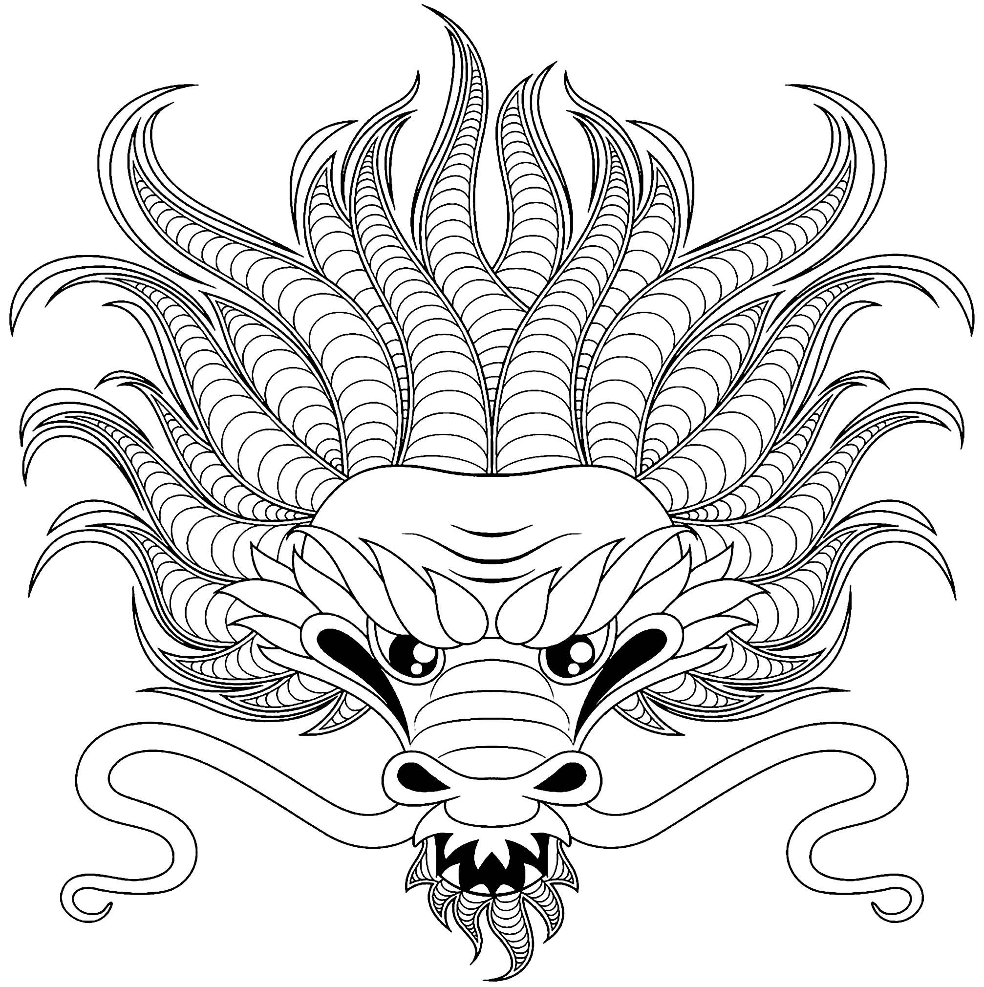 Drachen 30334 - Drachen - Malbuch Fur Erwachsene