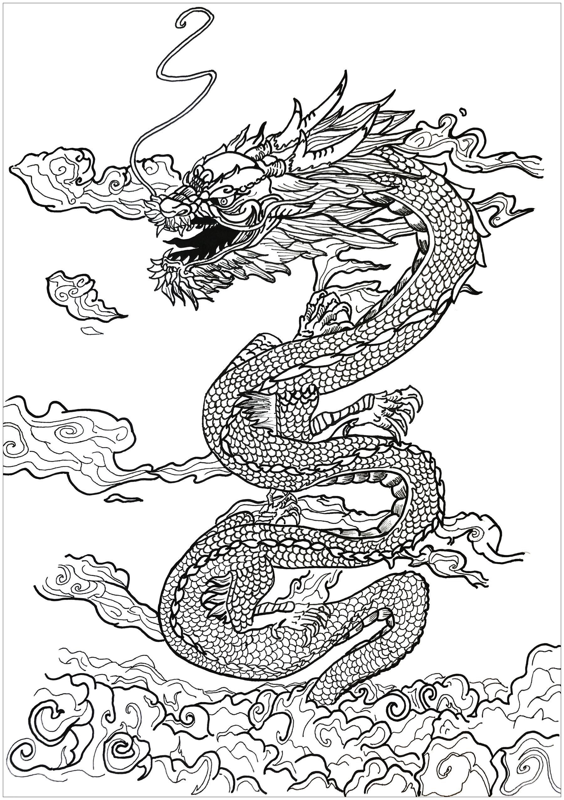 Drachen 45238 - Drachen - Malbuch Fur Erwachsene