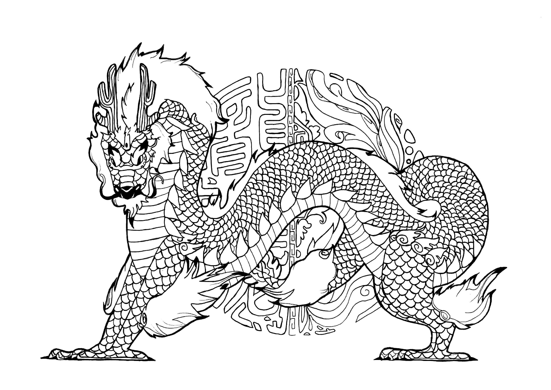 Drachen 62895 - Drachen - Malbuch Fur Erwachsene