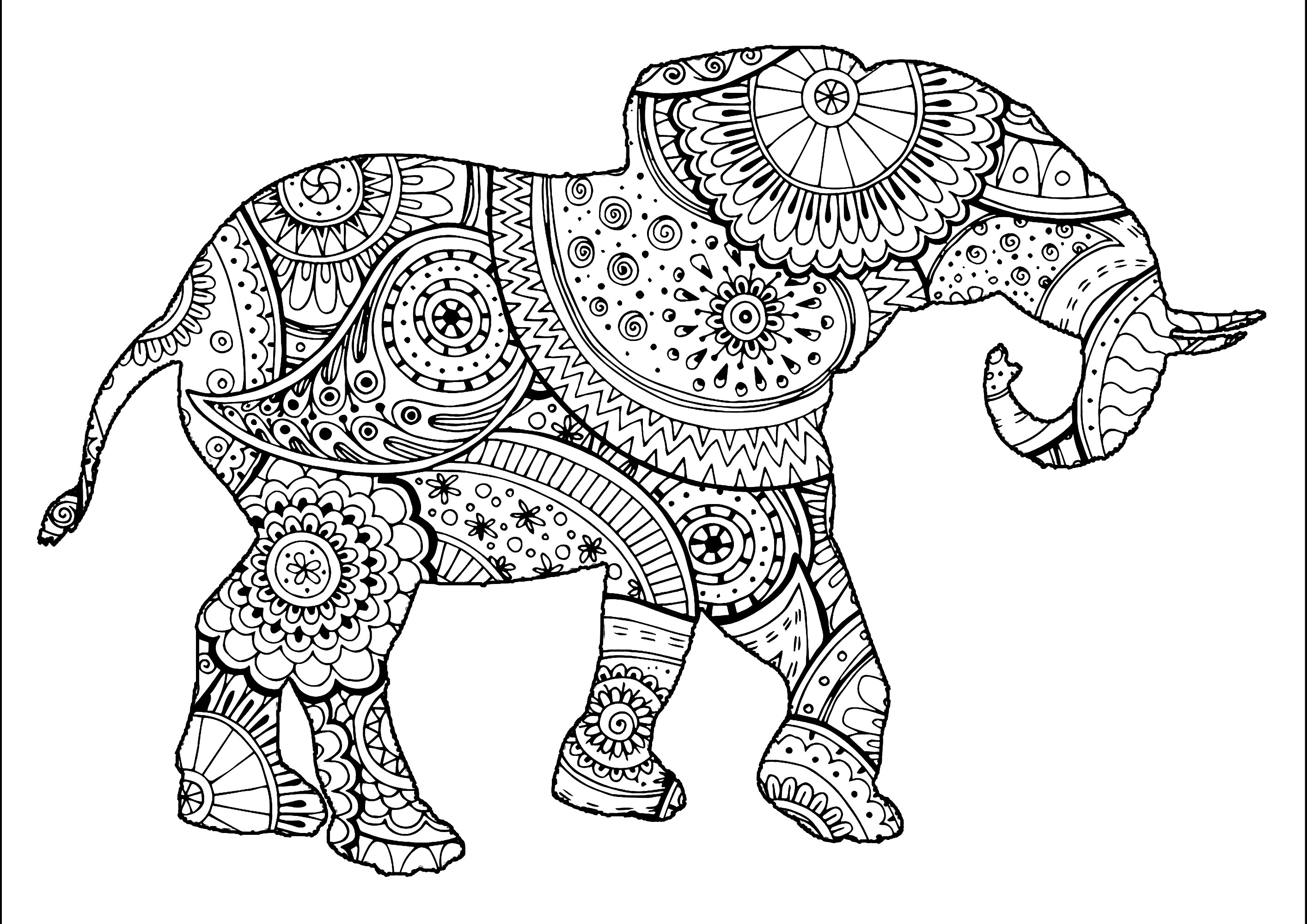 Malvorlage erwachsene elefant - 28 images - ausmalbilder f