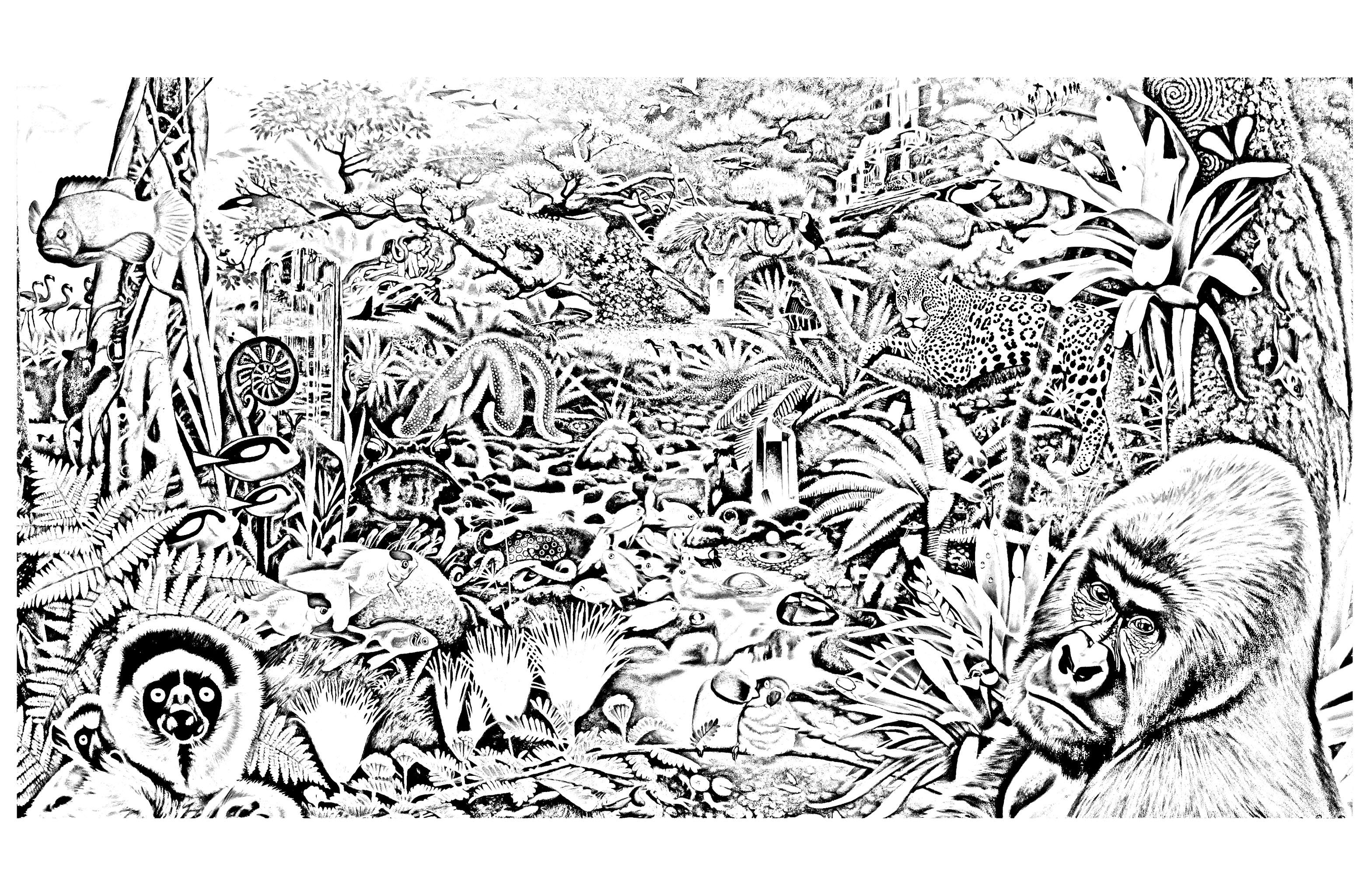 Dschungel Wald 95500 Dschungel Amp Wald Malbuch Fur