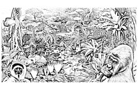 Dschungel wald 95500 - Dschungel & Wald - Malbuch Fur ...