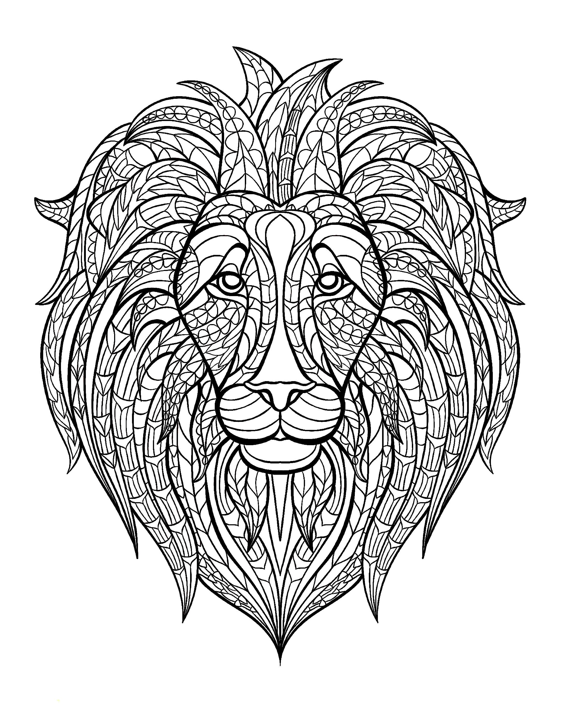 Afrique Tete Lion