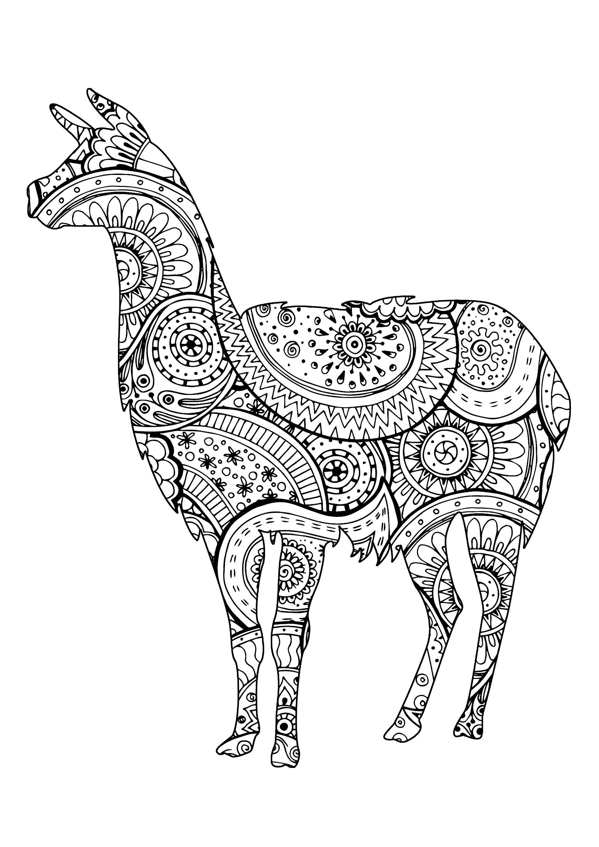 Lama avec motifs Zentangle et Paisley - Lamas - Coloriages