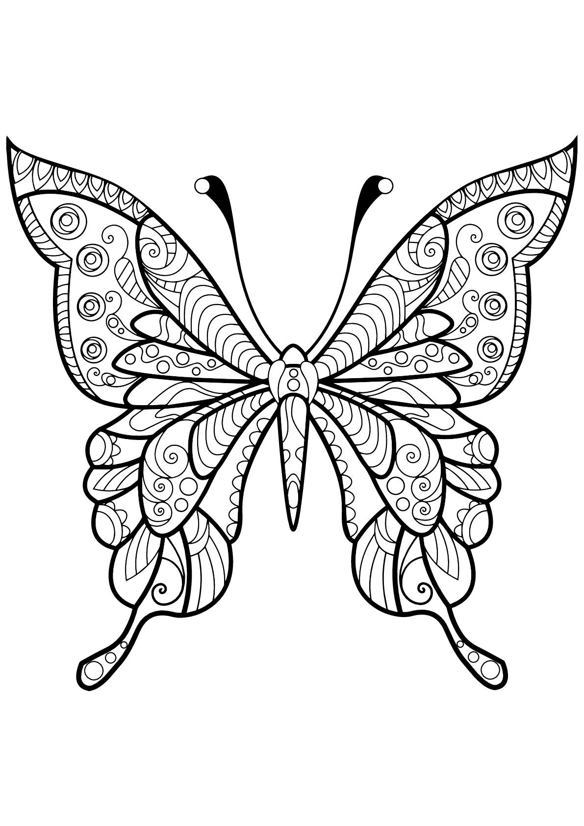 Insetti 72239  Farfalle e insetti  Disegni da colorare