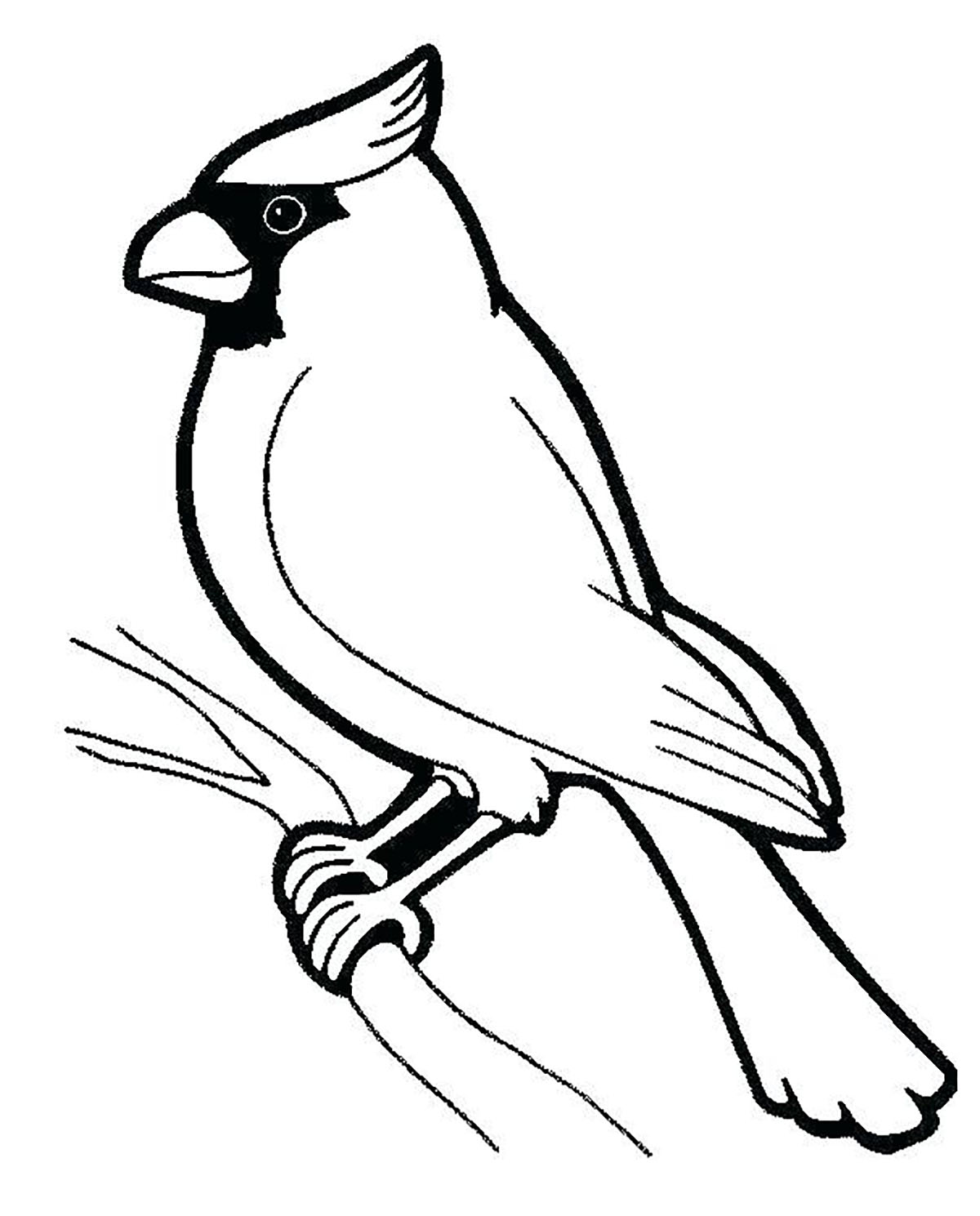 Birds To Download Birds Kids Coloring Pages