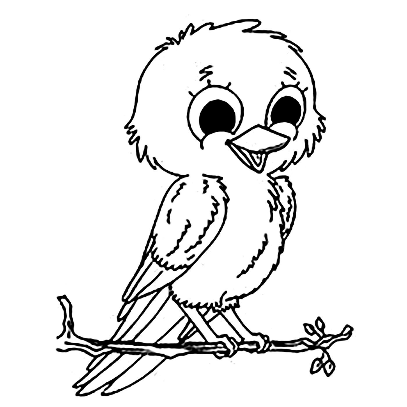 Birds For Kids