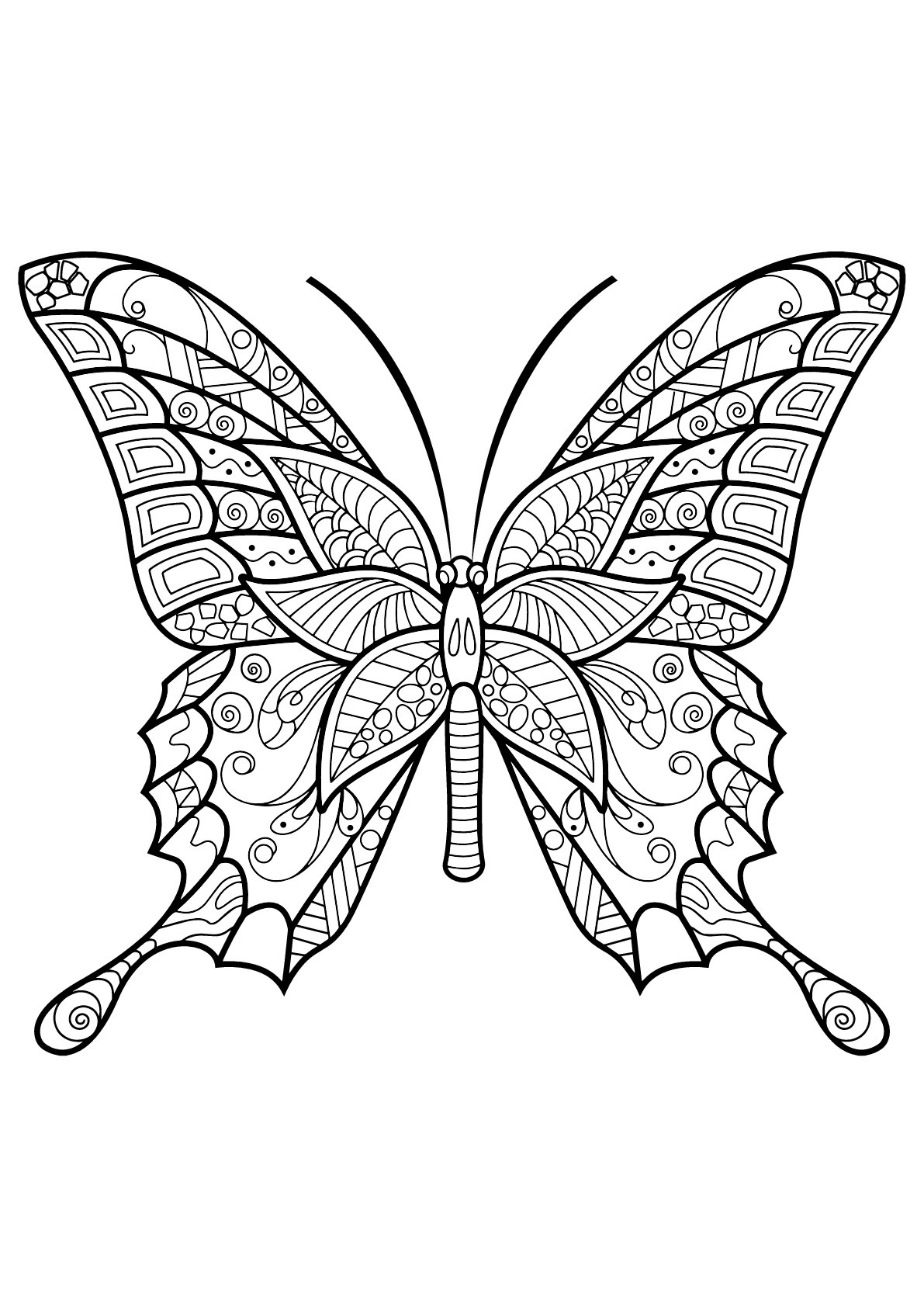 Butterflies Free To Color For Children