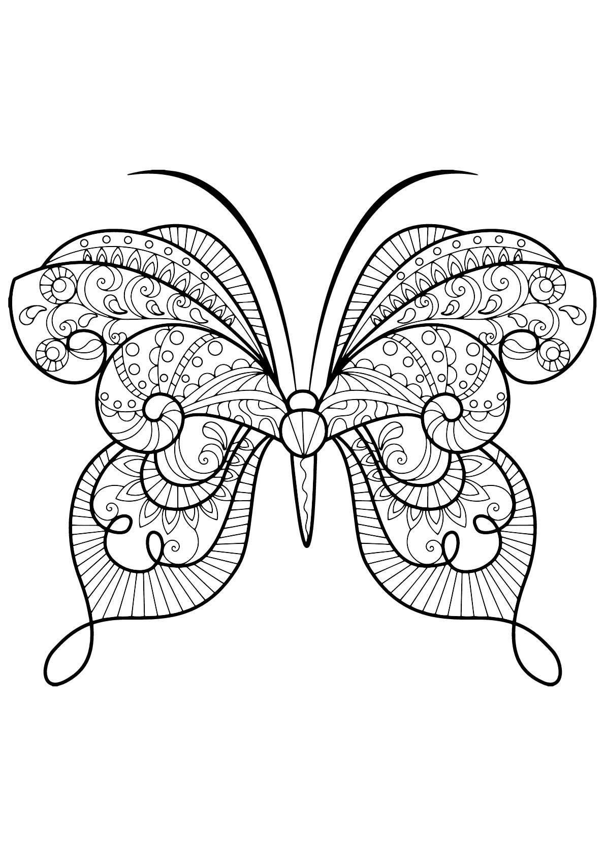 Butterflies To Download For Free