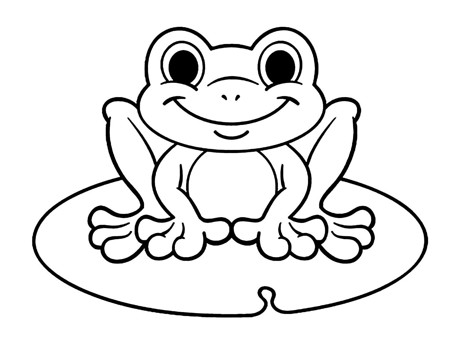 Color Worksheet Of A Tree Frog