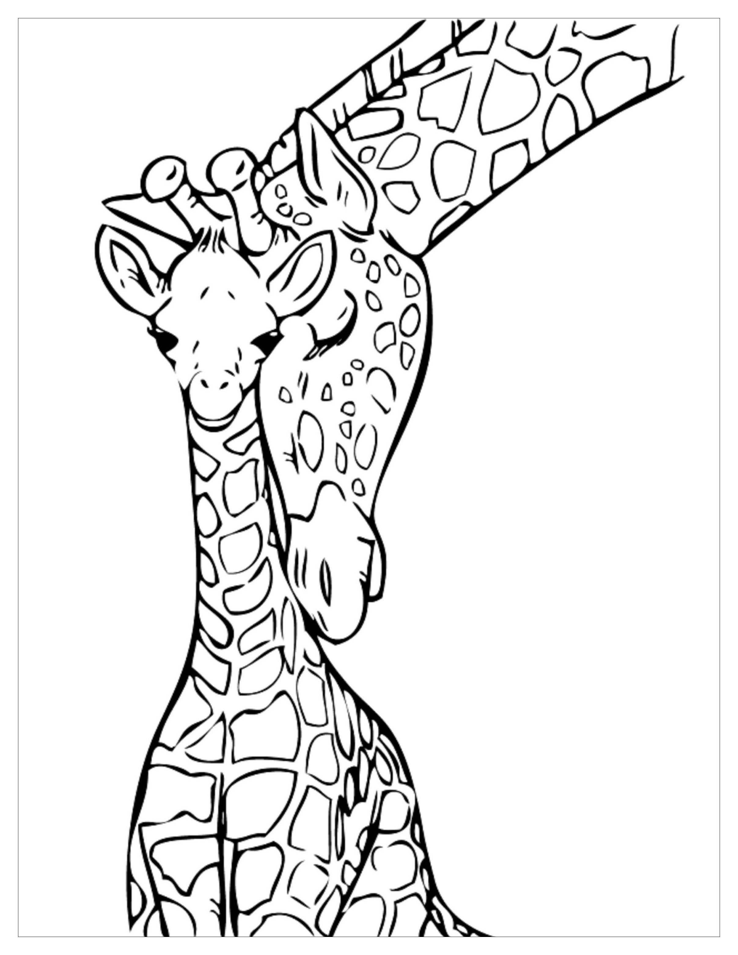 Giraffes For Children