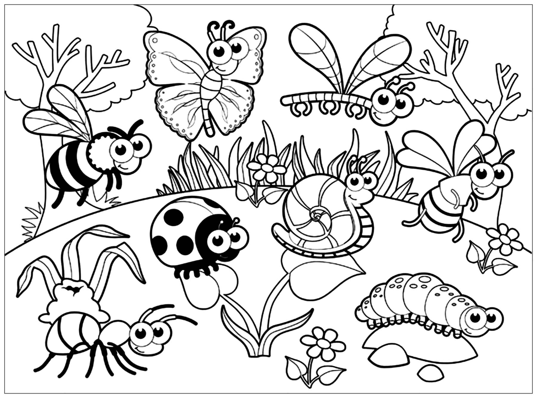 Butterfly Circus Worksheet