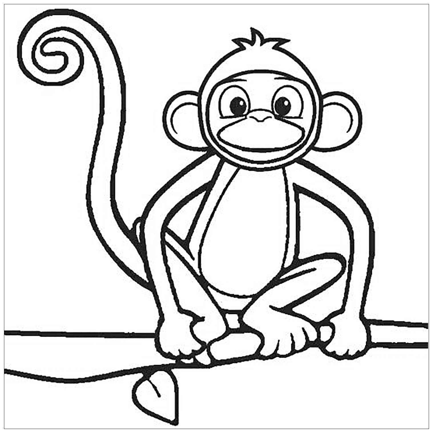 Worksheet Spider Monkey