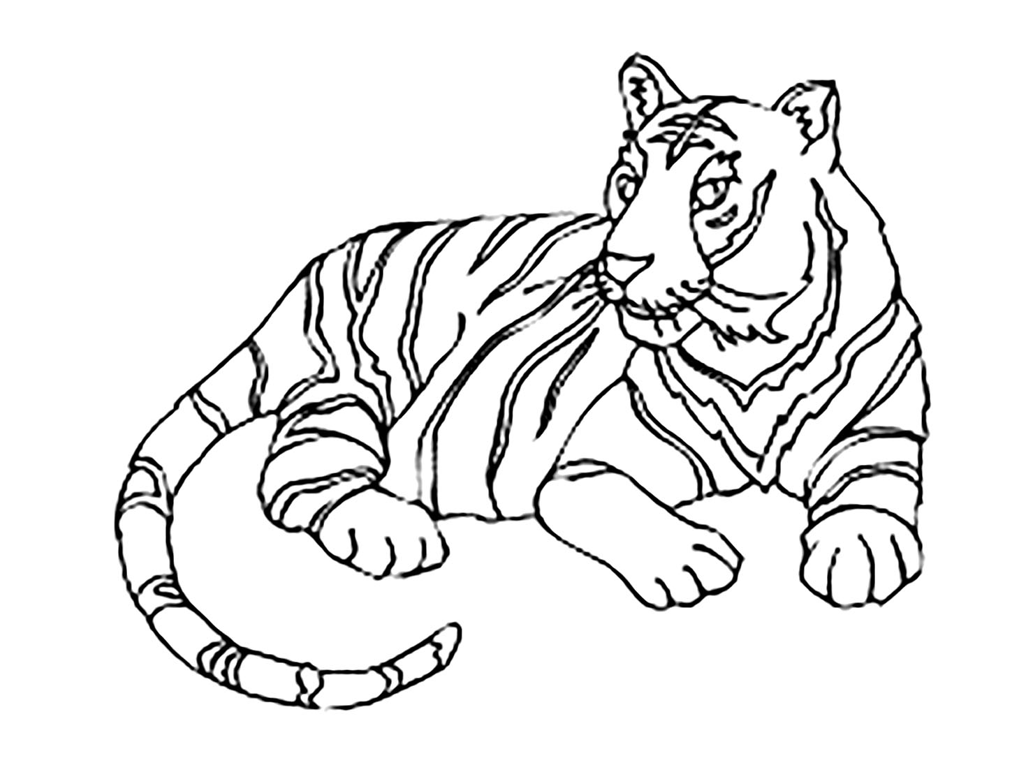 Tigers To Color For Children