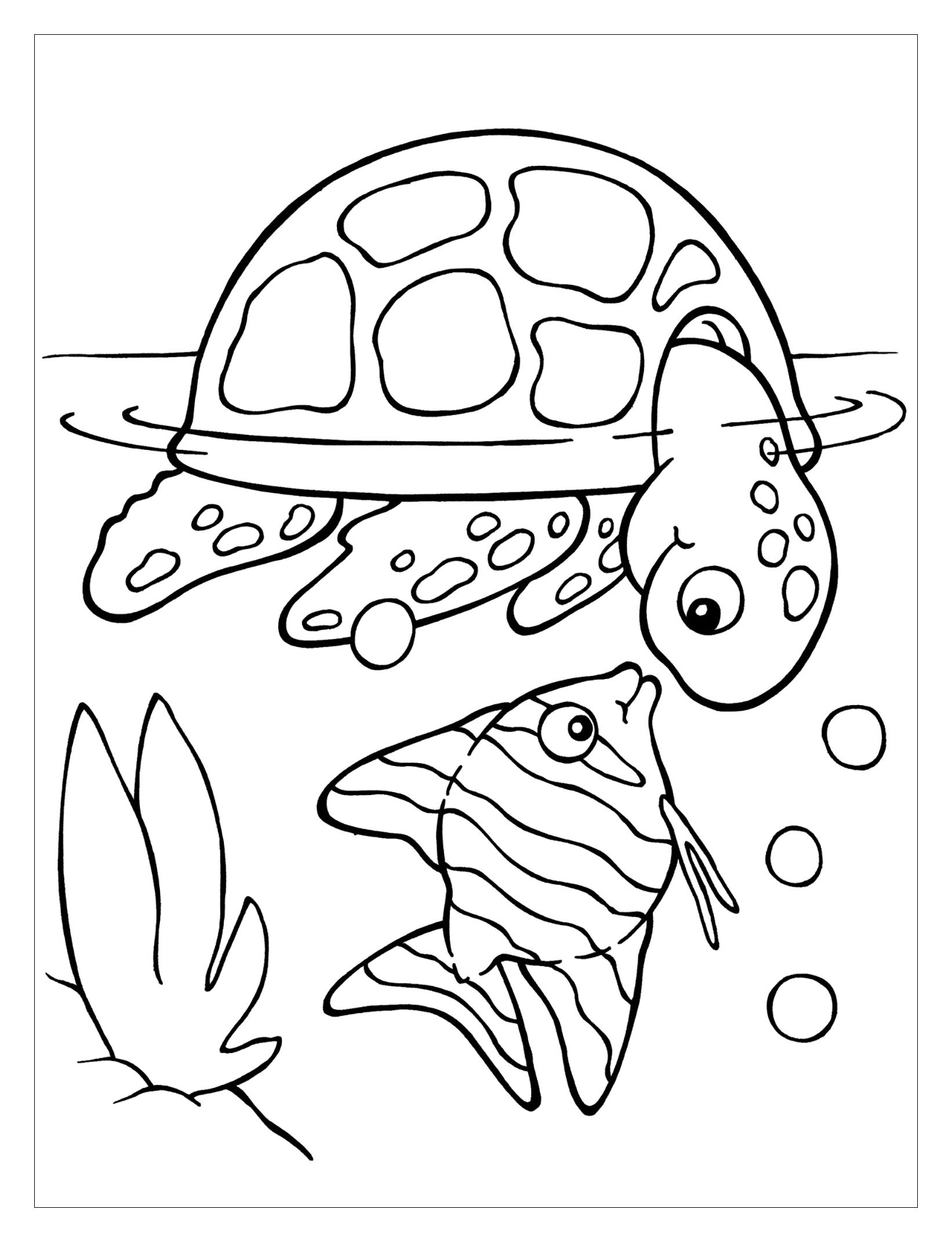 Turtles To Color For Kids