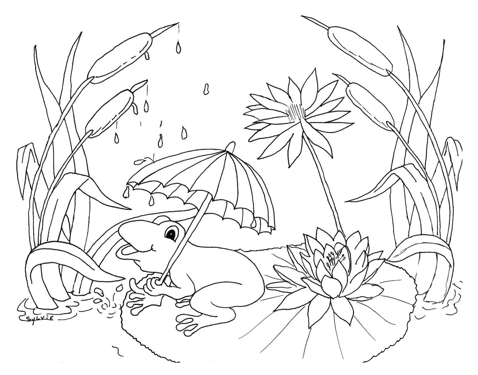 Weather Free To Color For Children