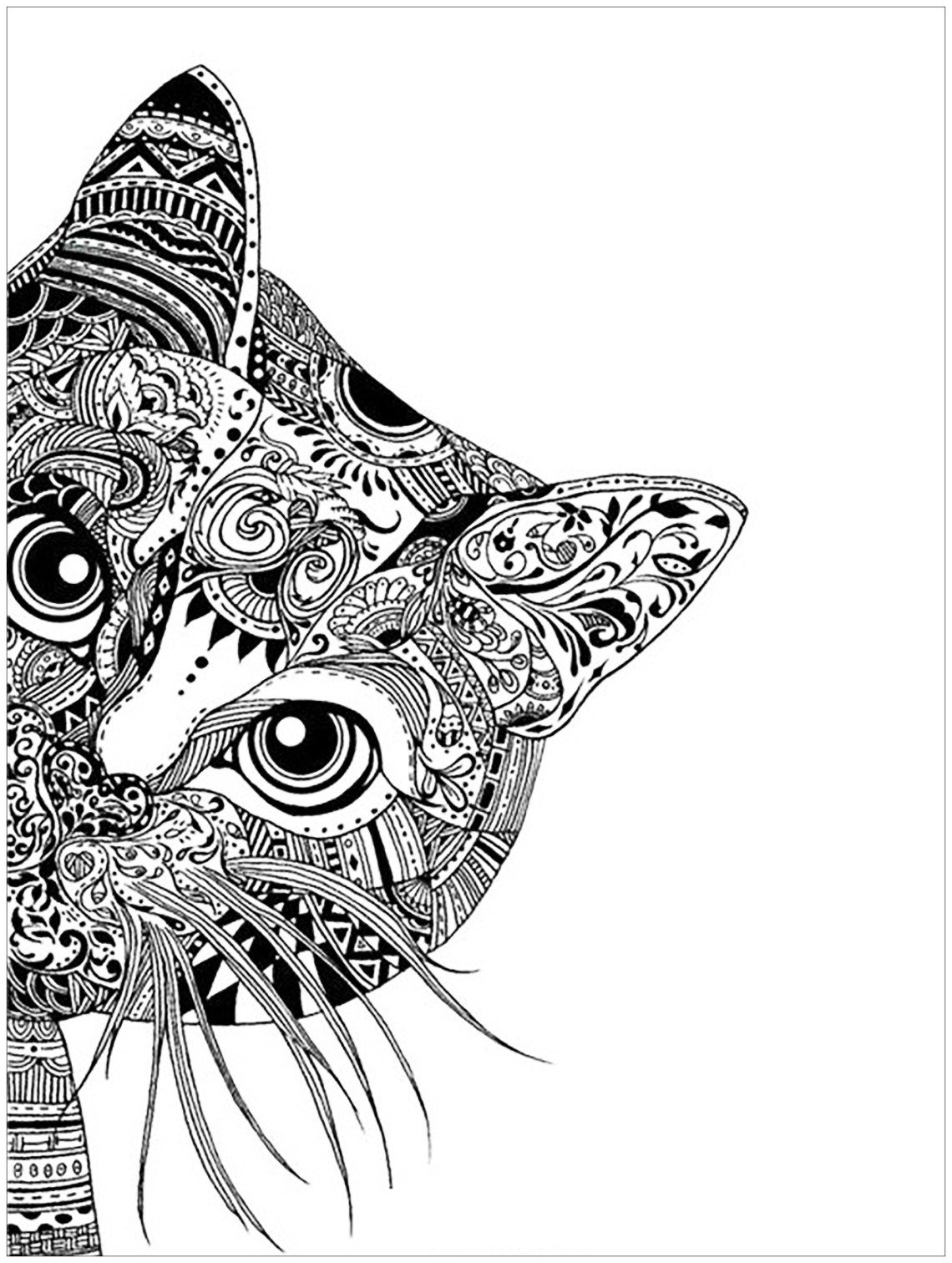 Pages cat head   Animals - Coloring pages for adults ...   coloring pages for adults animals