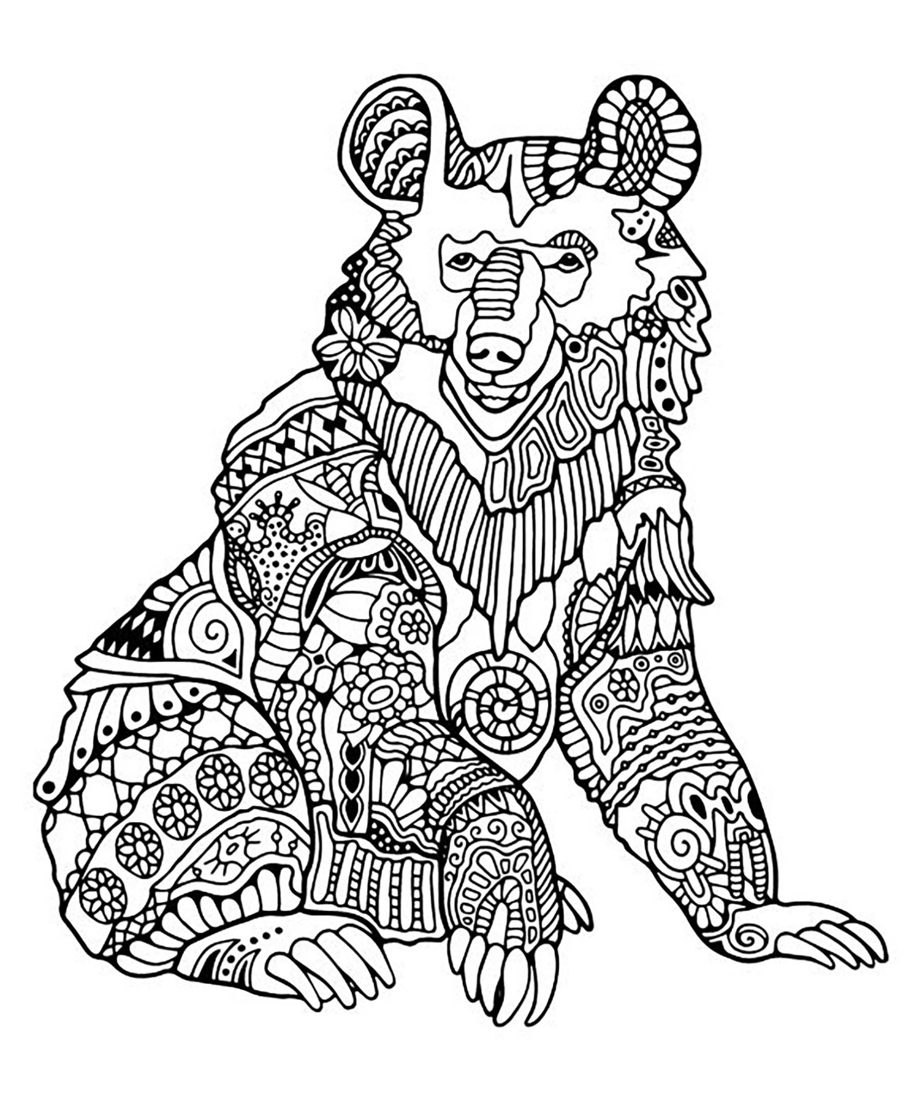 Bear 1 Bears Adult Coloring Pages