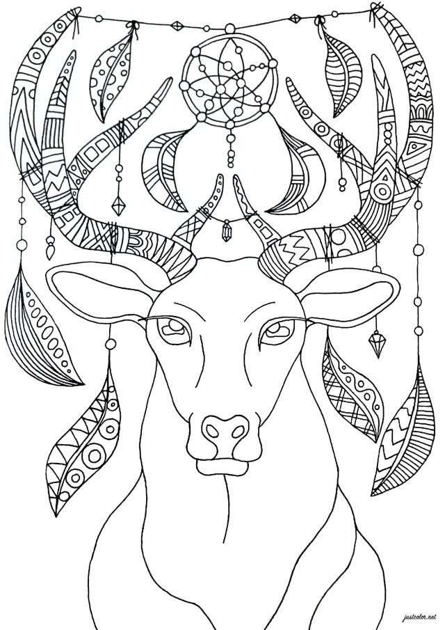 Dreamcatcher deer - Deers Adult Coloring Pages