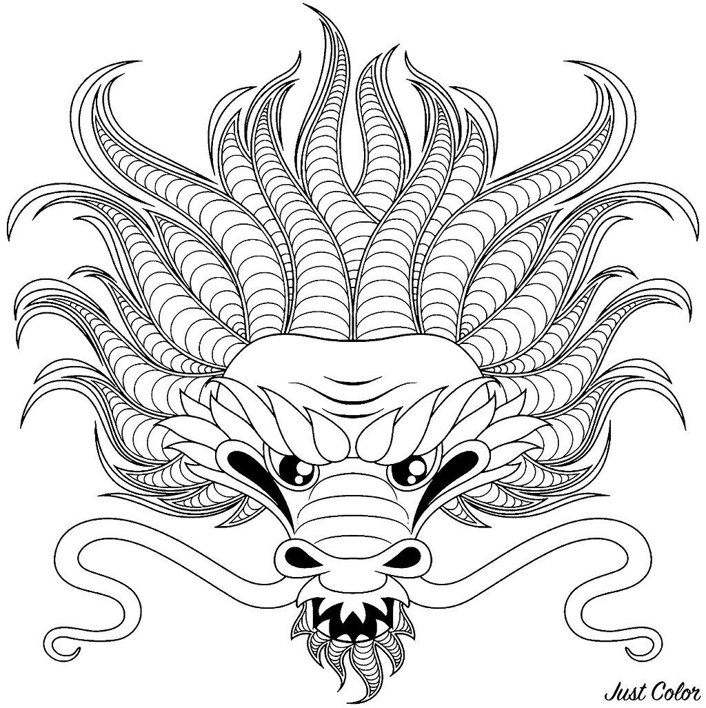 Dragon Head Dragons Adult Coloring Pages