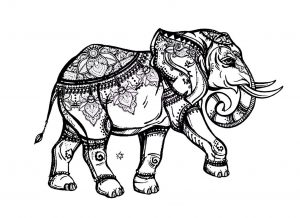 coloring pages elephant # 23
