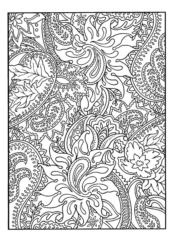 Pretty Patterns Plant